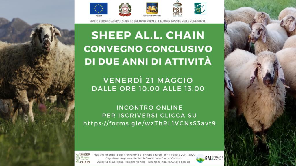 Pecore e marketing territoriale: convegno finale Sheep all chain